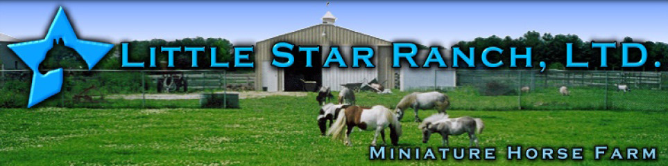 Little Star Ranch